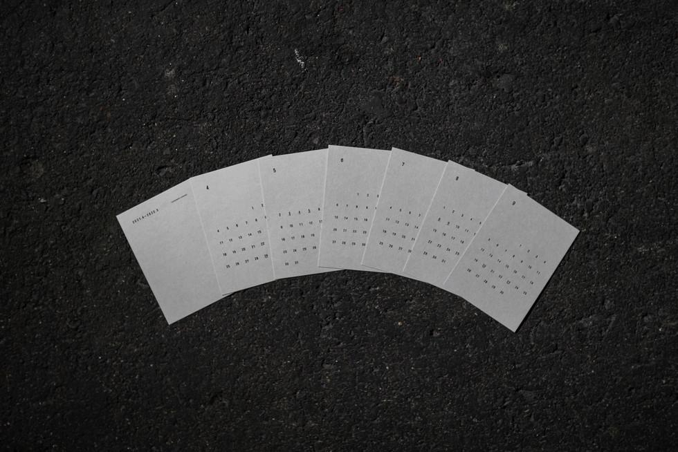 DSC02734.jpg