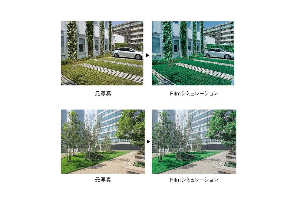 norun_oshima_cp 2.jpg
