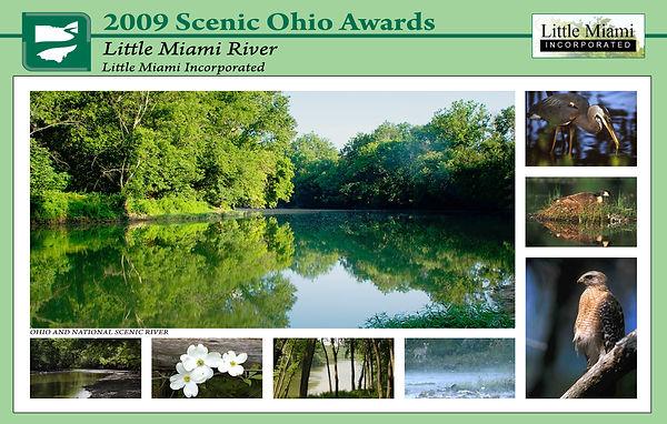 2009LMI_Award.jpg