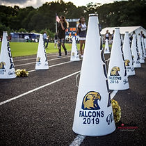 Lawrenceville photographer Lovelee Photography sports photography - Dacula high school cheerleaders