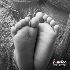 Lovelee Photography - Newborn Session -