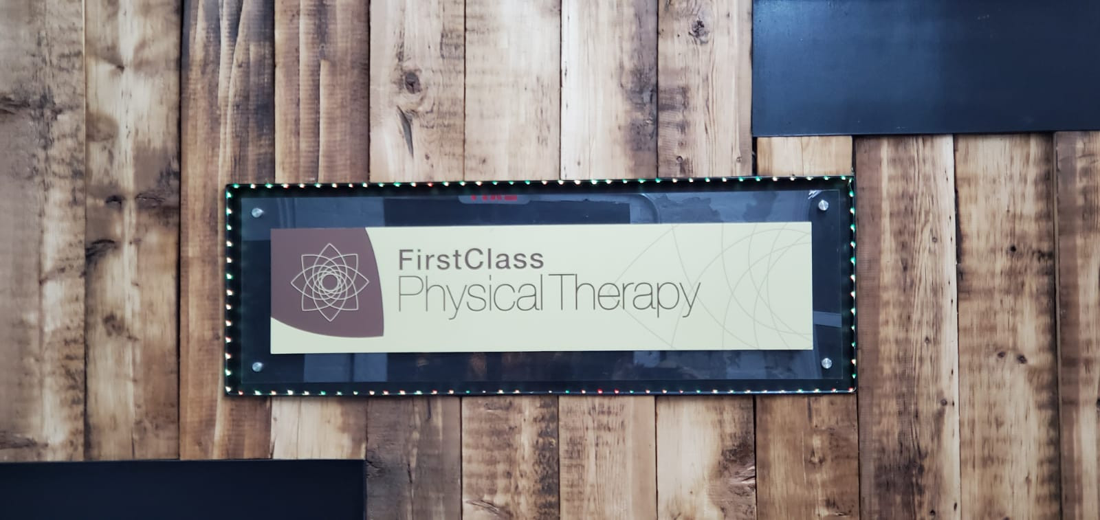 Physical Therapy Williamsburg Logo.jpg