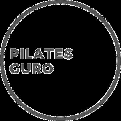 Guro Logo Alternative 2 Grey Transparent