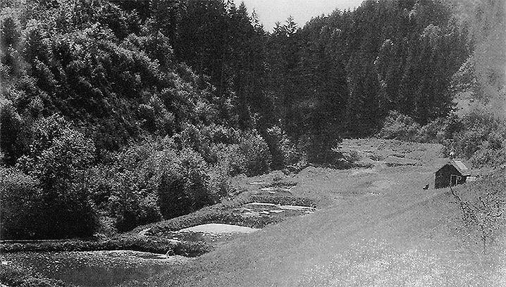 Fischweiher um 1930
