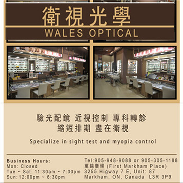 walesOptical.jpg