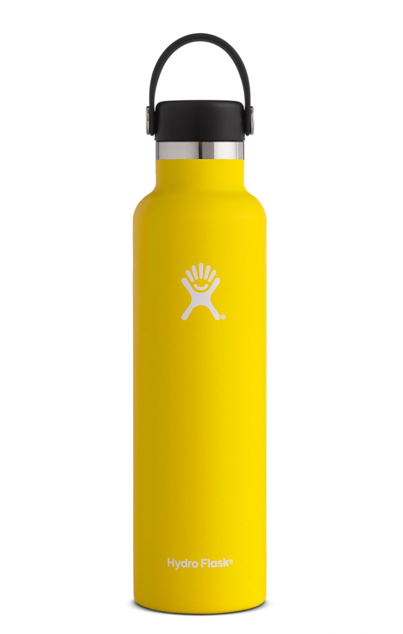 HF 24 oz standard lemon