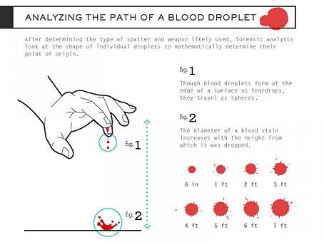 07 Tipos de Gotas de Sangre.jpg