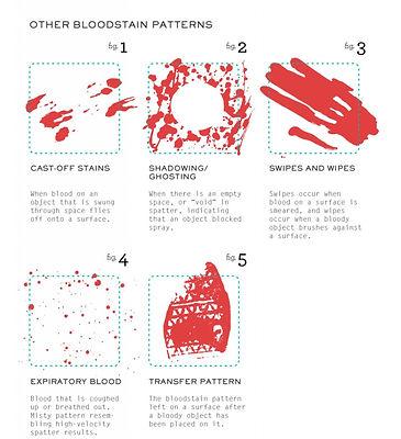 06 Tipos de patrones de manchas de sangr