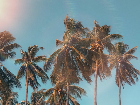 UNDERCOVER IN PUERTO RICO: A TRULY TROPICAL CHALLENGE.