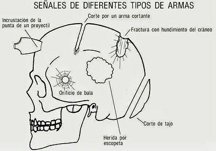 Antropologia 05.jpg
