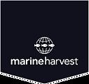 Marine Harvest Chile