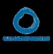 Logo with name Word SQUARE Blue Transpar