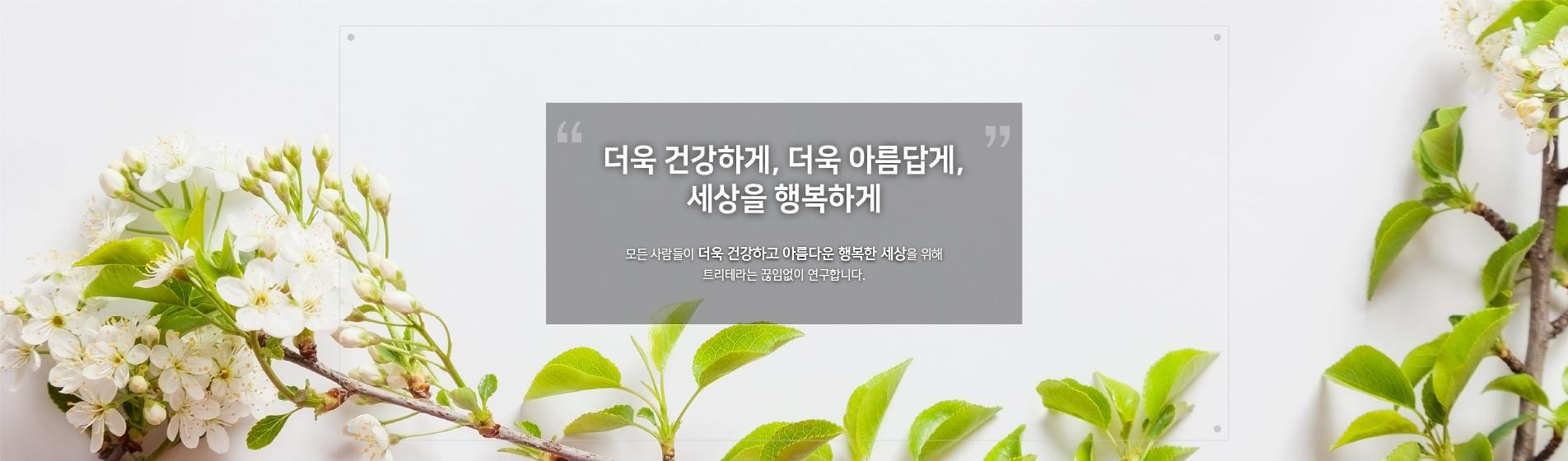 레이아웃_회사소개_내부_이미지003.jpg