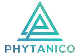 P Logo.jpg