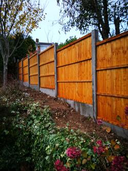 Fence Nov 16