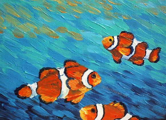 """Nemo and family"""