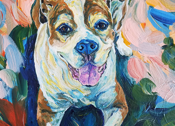 Diesel Dog portrait for Maria R. By Amber Ruehe