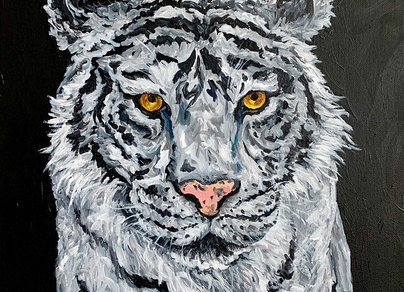 White tiger acrylic painting by Amber Ruehe