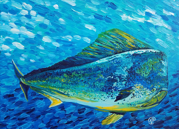 Blue Mahi Mahi acrylic painting by Amber Ruehe