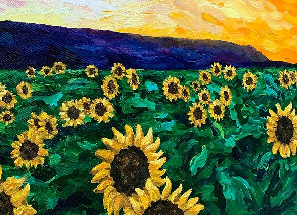 Sunflower field acrylic painting by Amber Ruehe