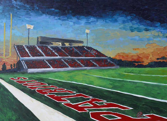 """""""Eastview High Football Field"""""""