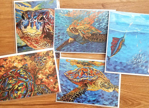 Sea turtle and 1 sailfish -5 Greeting cards