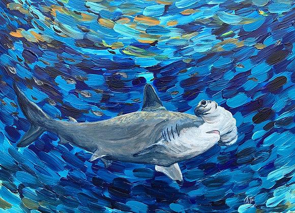 Hammerhead shark acrylic painting by Amber Ruehe