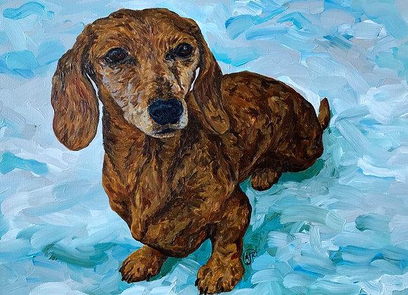Rami and Luna dog portraits acrylic paintings by Amber Ruehe