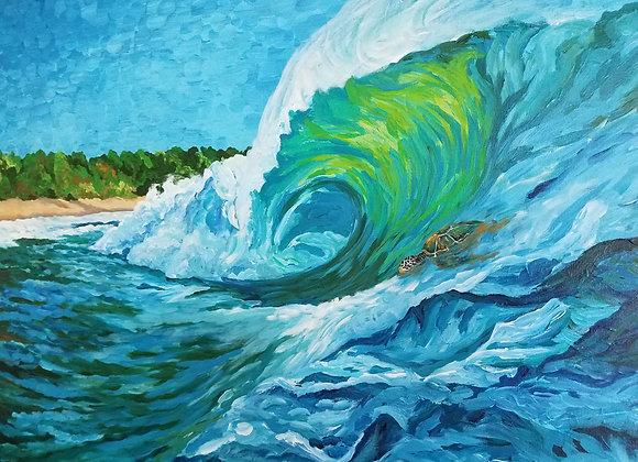 """Surf and sea turtle"""