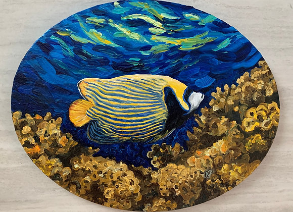 Emperor Angelfish and coral reef acrylic painting by Amber Ruehe