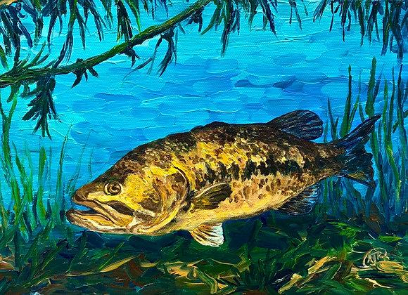 Largemouth Bass underwater acrylic painting by Amber Ruehe