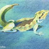 Surreal Lizard