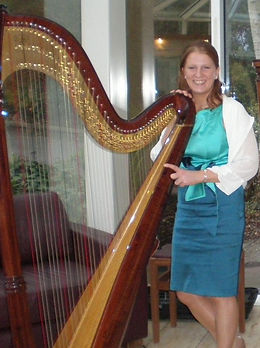 Miriam Long playing concert harp at the reception drinks in a hotel in Kerry.