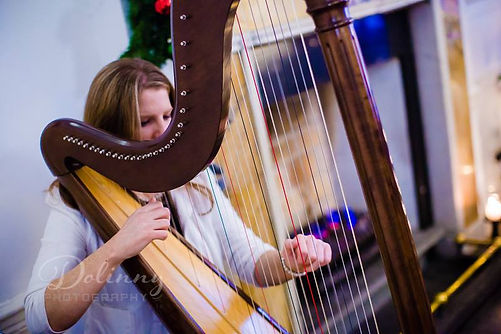 Miriam Long playing the harp at a Civil Ceremony in Kilkenny in a beautiful hotel.