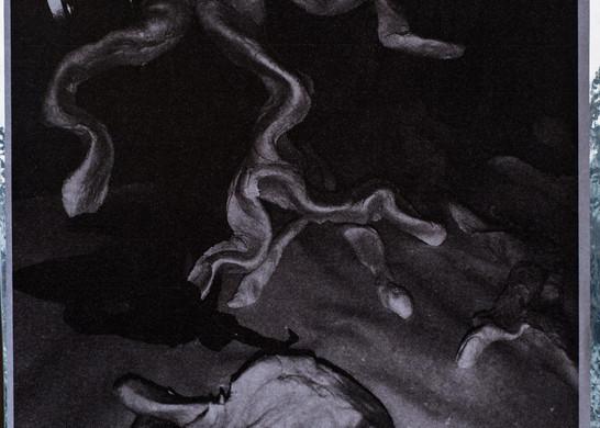 sc014.jpg