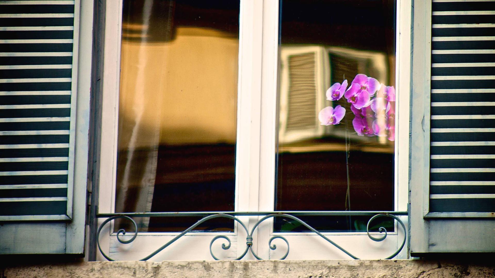 An elegant window, Rome