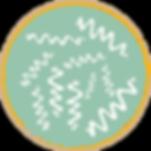 Spiruline naturelle, spiruline angevine, spiruline angers spiruline maine et loire, spiruline 49