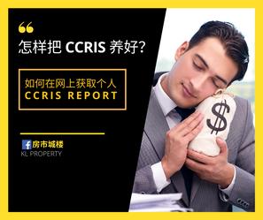 怎样把CCRIS弄好