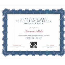 2016 News Excellence Award/Mason P.