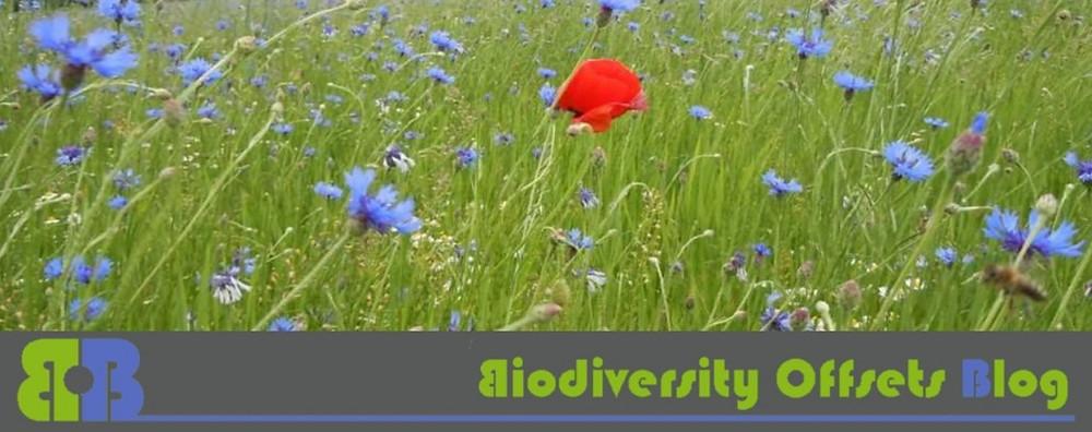 Biodiversity-Offsets-Blog-Logo.jpg