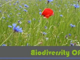 New international forum on biodiversity offsets