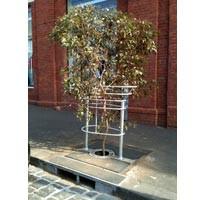Smith-Street-Tree2.jpg