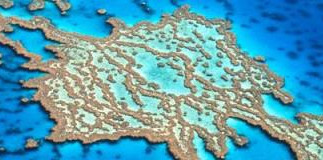 Bolder targets in latest Reef Plan