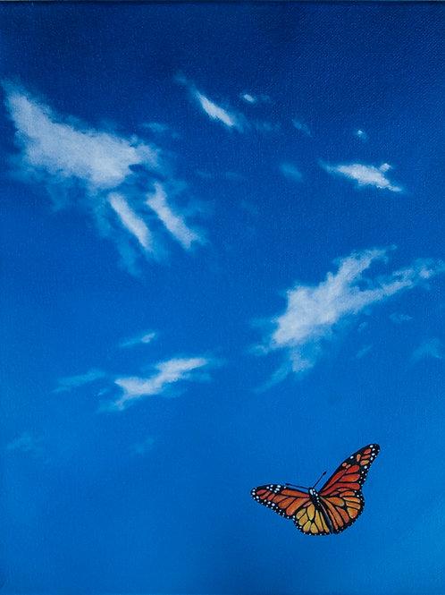 Flight - Butterfly