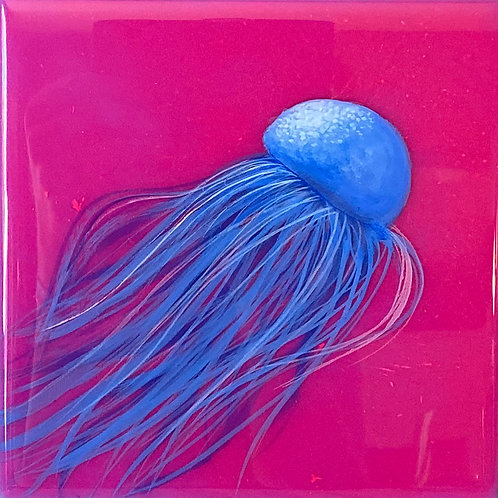 Jelly Blue on Pink