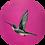 Thumbnail: Hummingbird on Pink