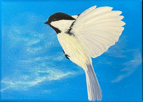 Chickadee - 2