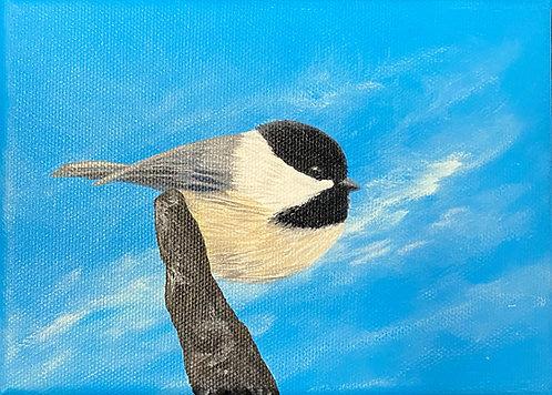 Chickadee - 1