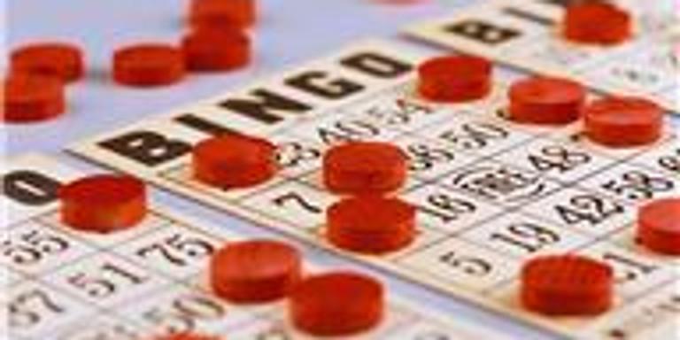Bingo-- Bingo Bingo