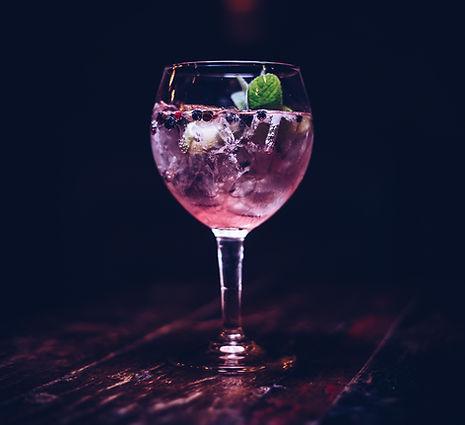Fancy Drinks Lynmouth Exmoor Gin